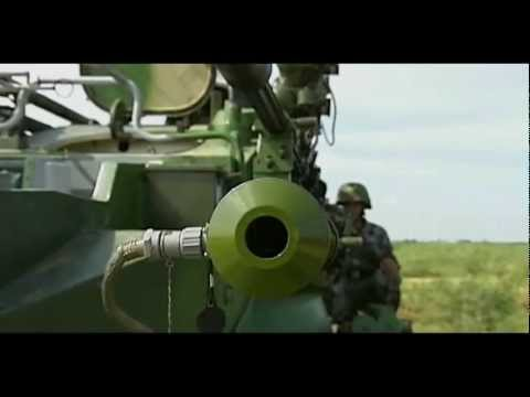 Chinese People's Liberation Army artillery