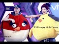 EXO angry birds Funny
