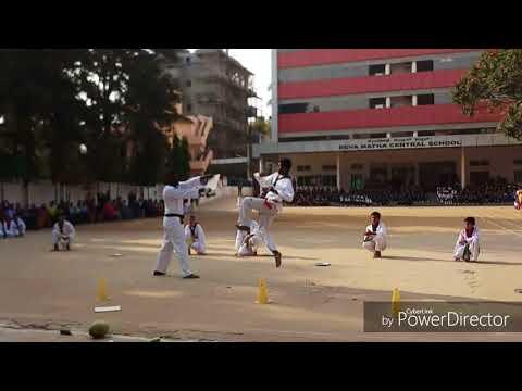 Global Taekwondo Mission