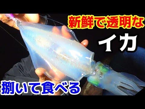 釣れたイカと根魚で作る海鮮ユッケ丼が美味すぎた!