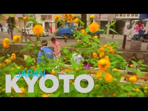Kyoto, Japan   DreamTrip