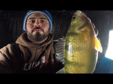 Lake Simcoe ICE Report - FISHING, ICE & DRONE