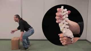 You can stop your low back pain / 15min movie of Japanese medical doctor