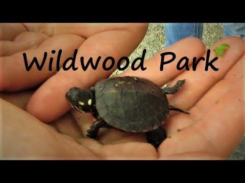 Wildlife Adventure At Wildwood Park ~ Harrisburg PA