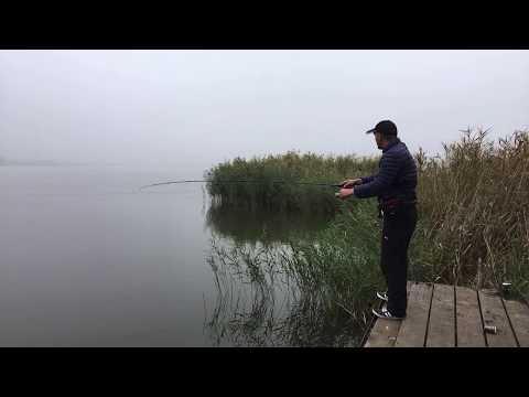 Рыбалка онлайн, щука на каждом и через заброс!!! Часть трансляции зависла, такой у нас 3G