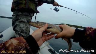 Рибалка в Карелії . Ловля щуки на воблери Rapala Shad Rap c Алиэкспресс