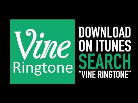 Vine Ringtone (Marimba Hip Hop Remix Ooh Kill Em) DOWNLOAD
