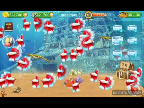 How To Hack Fish Live Cash And Money