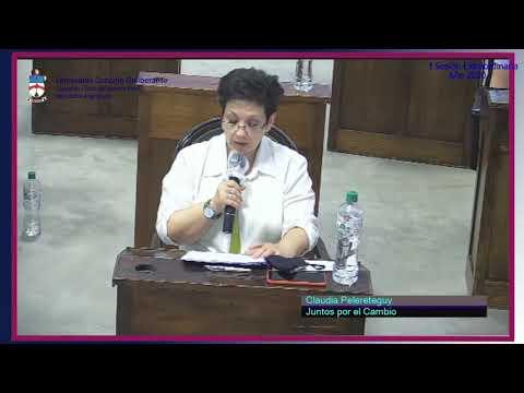 Concejal Claudia Pelereteguy (JxC) Debate sobre la utilización de pirotecnia en Cañuelas.