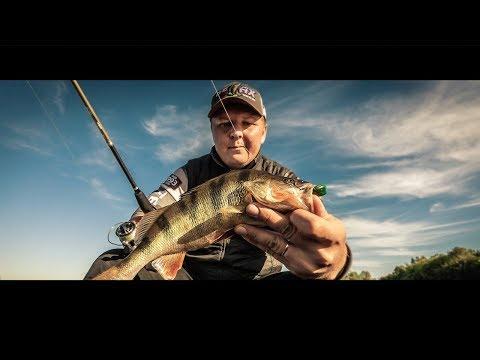 Рыбалка на спиннинг. Ловля окуня на спиннинг. Рыбалка на Волге.