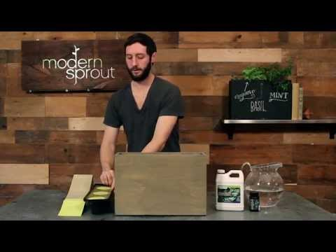 Modern Sprout's 3 Pot Hydroponic Planter - Setup Video