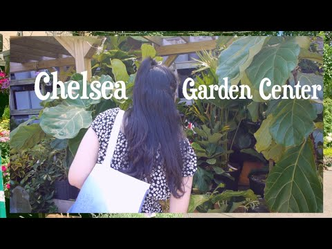 NYC Korean couple dating in Brooklyn Chelsea Garden Center