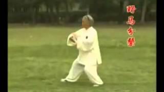传统杨式太极拳八十五式 Yang Style Taiji Quan 85