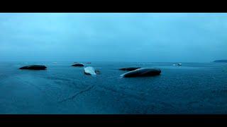 ЧЁРНЫЕ КАМНИ ПОБЕЛЕЛИ БЫ ОТ ТАКОГО КЛЁВА Кременчугское водохранилище РЫБАЛКА В УДОВОЛЬСТВИЕ