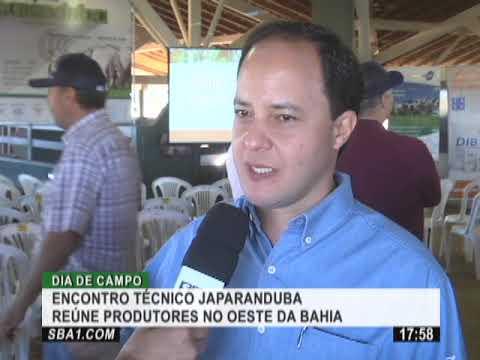 Encontro Técnico Japaranduba reúne produtores no oeste da Bahia
