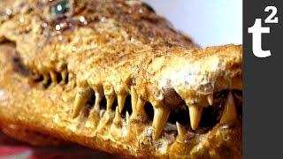 How to Escape a Crocodile