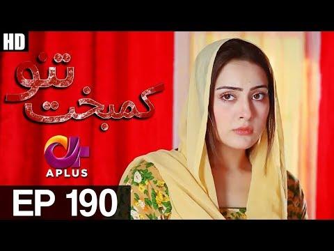Kambakht Tanno - Episode 190 - A Plus ᴴᴰ Drama