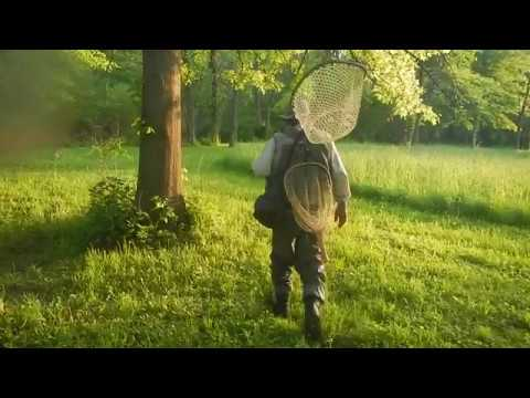SPRING FLY FISHING-RARIFIED