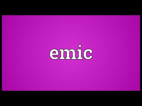 Emic Meaning