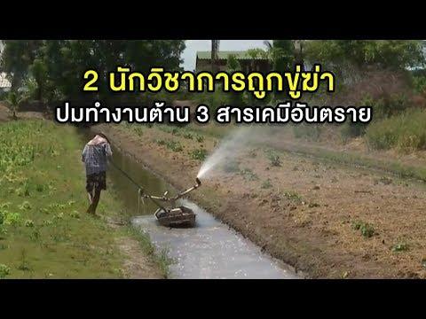 กินเจโคราช-ภูเก็ตคึกคัก ม้าทรงโชว์อภินิหารหวาดเสียว - วันที่ 03 Oct 2019 Part 29/42