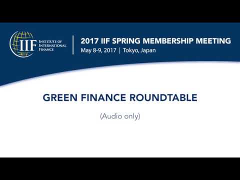 GREEN FINANCE ROUNDTABLE