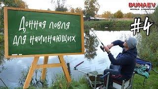 Донная ловля для начинающих. Ловля карася на деревенском пруду