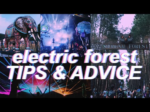 HOW TO SURVIVE E FOREST // MY EXPERIENCE: ELECTRIC FOREST 2015