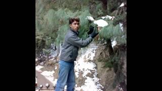 Irfan Jamil in Ayyubia (Raja ko rani se pyar hogaya)