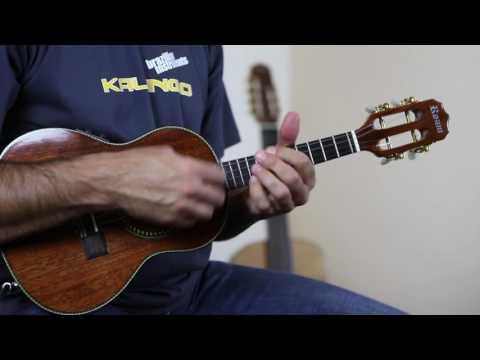 Cavaquinho Estilo Eléctrico - Rozini (A316080 - Kalango.com)