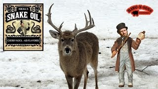 BEST Deer Hunting Stories Ever Told by James Kroll Dr Deer - Brassicas