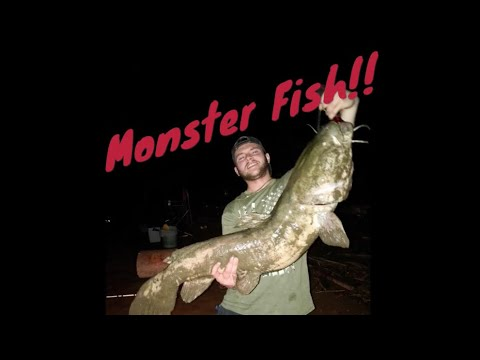 Allegheny River Fishing