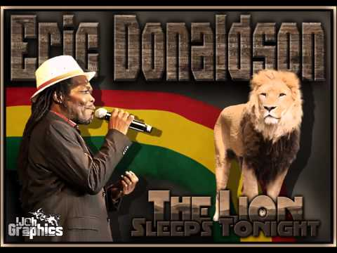 Eric Donaldson - The Lion Sleeps Tonight