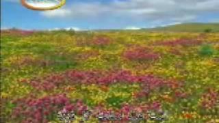 Qaseedah - Ya Aaina Faizillah Hi Wal Irfani (Punjabi)