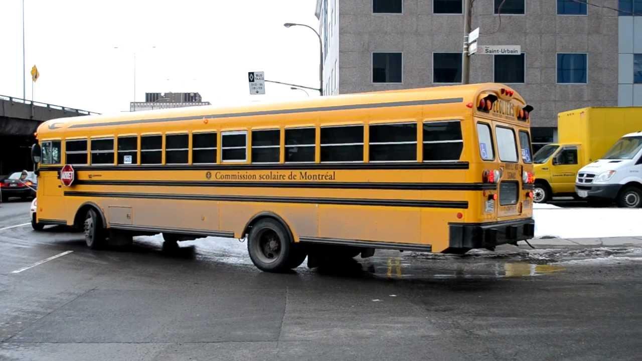 Blue Bird Flatnose School Bus Convoy In Action Youtube
