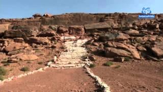 النقوش الصخرية بولاية النعامة  متحف طبيعي مفتوح على الهواء