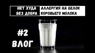 Нет худа без добра Аллергия на молоко Безмолочная диета Непереносимость молока