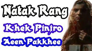 Old PTVs Sindhi Drama    Natak Rang    Pinjro Aeen Pakkhee
