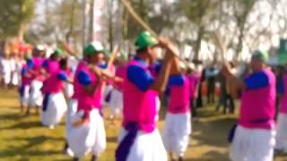 Download Video International Elephant Race Starts | Cultural Show | 2014, 26 December MP3 3GP MP4