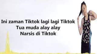 Rayvelin - Lagi-lagi TikTok (Lyrics)