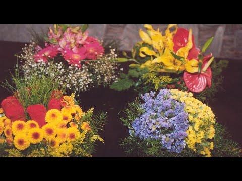Curso Treinamento de Florista - Cores