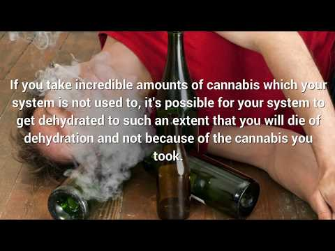 What is a Cannabis Overdose? - Pot Valet Marijuana Delivery