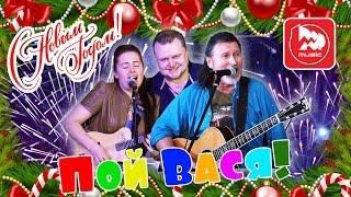 Пой Вася или С НОВЫМ ГОДОМ Новогодний кавер на группу Кукуруза