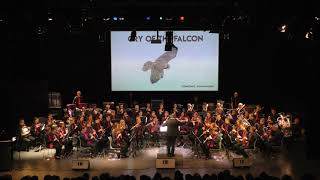 Cry Of The Falcon - K. Houben