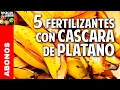 5 fertilizantes con cascara de plátano