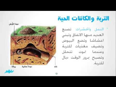 مكونات التربة علوم للصف الخامس ترم تاني موقع نفهم Youtube