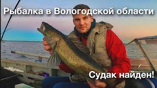 ВОТ ЭТО ДА СУДАК КЛЮЕТ С ПОВЕРХНОСТИ Рыбалка на лесном озере бешеный клев плотвы на поплавок