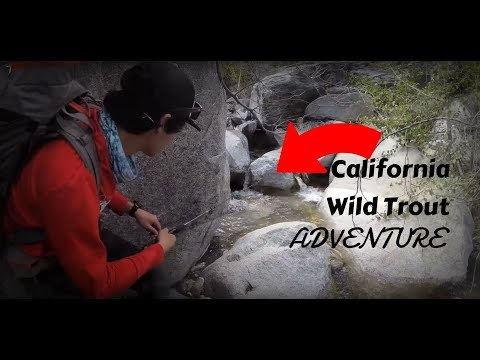 A Trip To A Hidden California Creek For Trout Fishing + Found A Pot Farm