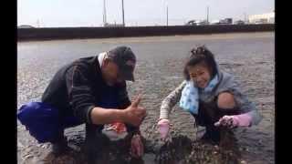 2014年3月29日 いつものメンバーで千葉県富津へ潮干狩りに行って...