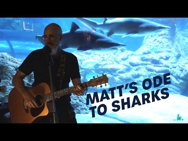 Matt's Love Song For Sharks | Pete, Matt and Kymba | Mix94.5