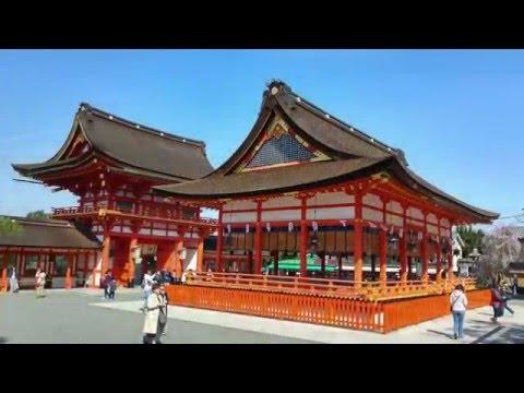Primavara in Japonia - Ciresii Infloriti si nu numai... (Slideshow)